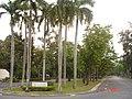AIT, Thailand - panoramio - Seksan Phonsuwan.jpg