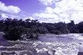 ASC Leiden - F. van der Kraaij Collection - 05 - 102 - A foamy river with rapids, bushes and trees - Liberia, 1976.tif