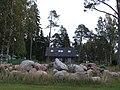 A house in Suurpea.jpg