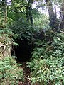 A mysterious cave - geograph.org.uk - 1550140.jpg