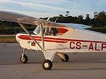 Aero Fénix Aniversário 75 anos do voo do Stearman (6542995647).jpg