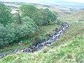 Afon Sawdde Fechan - geograph.org.uk - 800639.jpg