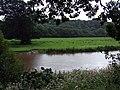 Afon Teifi at Llandyfriog - geograph.org.uk - 922917.jpg