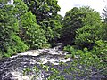 Afon Tryweryn - geograph.org.uk - 469228.jpg