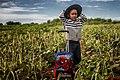 Agricultura familiar (15643542413).jpg
