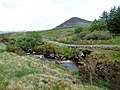 Aillie River at Gleenagashleeny - geograph.org.uk - 2427367.jpg