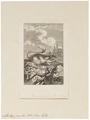 Alactaga jaculus - 1700-1880 - Print - Iconographia Zoologica - Special Collections University of Amsterdam - UBA01 IZ20500009.tif
