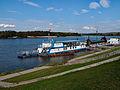 Alians PL KazimierzDolny Jesien,02 10 2008,PA020049.jpg