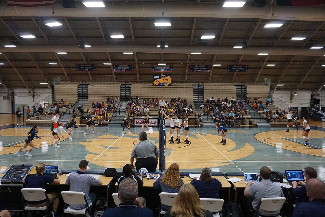 Angelo State vs. Texas A&M–Commerce volleyball 2017 16.jpg