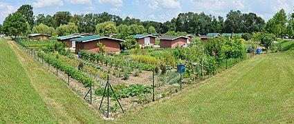 Jardin potager wikip dia - Jardin potager bio saint denis ...