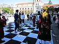 Anime checkers at FanimeCon 2010-05-30 2.JPG