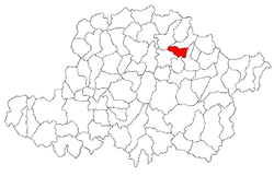 Location in Arad County