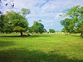Area verde el el bule, Chetumal. - panoramio.jpg