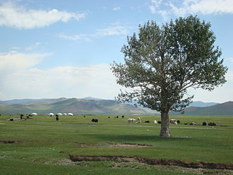 Mongolia - Pasture land in Arkhangai Province. Mongolia was the heartland of many nomadic empires.