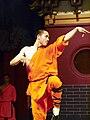 Art of Shaolin Kung Fu.jpg