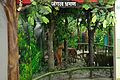 Artificial Forest - Resources of Jharkhand Gallery - Ranchi Science Centre - Jharkhand 2010-11-27 8074.JPG