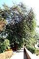Aswan Kitchener island 8.jpg