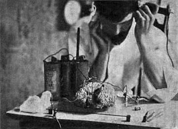 Experiment to use human brain as a radio wave detector, 1902 Attempt to use human brain to receive radio waves.jpg