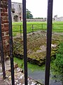 August 25th 2008 Baconsthorpe Castle (15).JPG