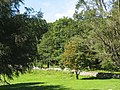 August brings the first signs of Autumn to the Dolmelynllyn parkland - geograph.org.uk - 533884.jpg