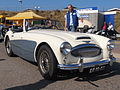 Austin Healey dutch licence registration DR-10-05 pic1.jpg