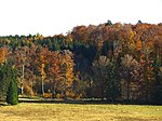 Autumn - panoramio (57).jpg