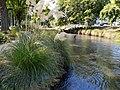 Avon river, Christchurch.jpg