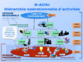 B-ADSc operational-hierarchy-of-activities.png