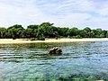 Balicasag Marine Sanctuary, Bohol, Philippines 03.jpg
