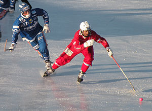 Bandy - Swedish bandy players in January 2011