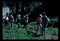 Barb Jensen leads guided walk. Probably Paradise. September, 1990. slide (262798c6720a42ad9d9b401f90f593a2).jpg