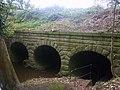 Barton Brook Aqueduct - geograph.org.uk - 1557789.jpg