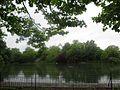Battersea Park Lake.jpg