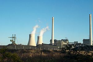 Bayswater Power Station - Bayswater Power Station with coal