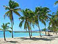 Beach in Sainte-Anne, Guadeloupe.jpg