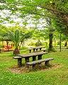 Bench (furniture) نیمکت های جنگلی، نمک آبرود مازندران.jpg