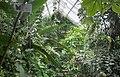 Berlin-Zoo-Tropenhalle-116.jpg