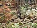 Berstlach als Zufluss zum Goldbach - panoramio.jpg