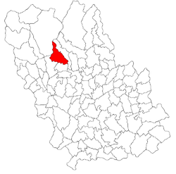 Location of Bertea