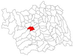 Vị trí của Berzunti