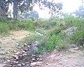 Bhangarh fort Rajasthan 17.jpg