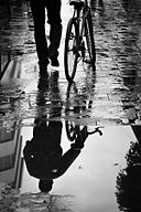 Bicycle reflections