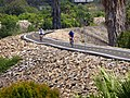 Bicycling on the San Gabriel River Trail, Long Beach, Calif. - panoramio.jpg