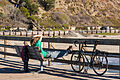 Bicyclist Relaxing on the Pier (11812400136).jpg
