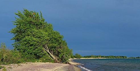 Big Sandy Bay beach