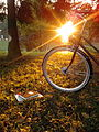 Bike on grass, autumn02.jpg