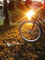 Bike on grass, autumn02.jpg