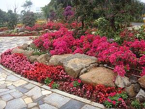 Binhai Park - Image: Binhai Park in 2016 03 03