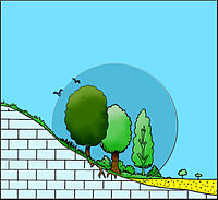 Biotope Illustration.jpg