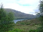 File:Birch trees framing Loch Affric - geograph.org.uk - 192035.jpg